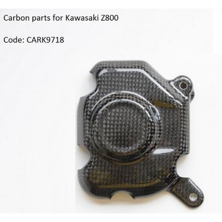 Coperchio Pick Up Carbonio Kawasaki Z800 (13-15) Lightech CARK9718