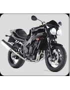 accessori moto triumph baby speed