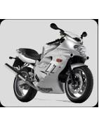 accessori moto triumph TT 600